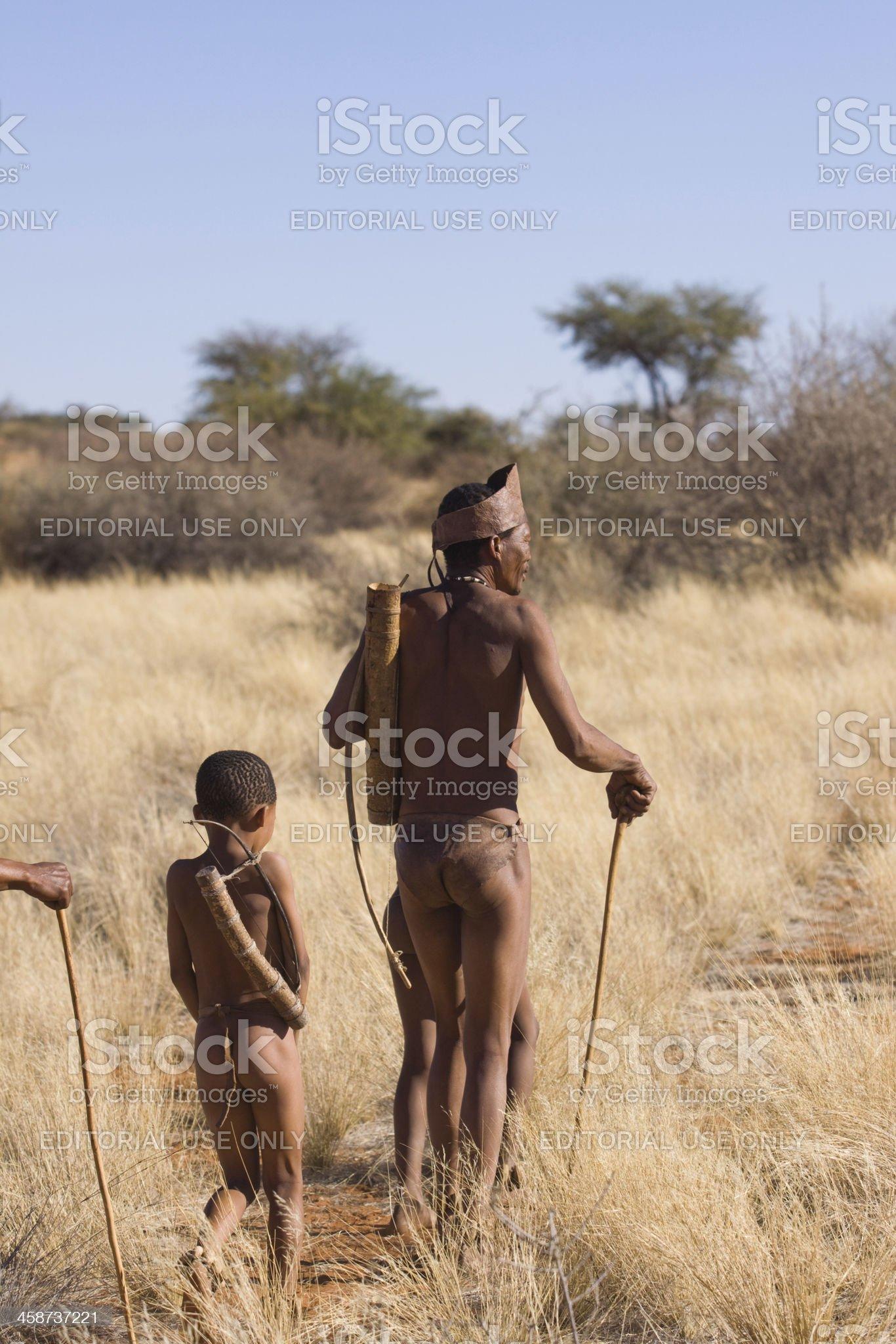 bushman walk royalty-free stock photo