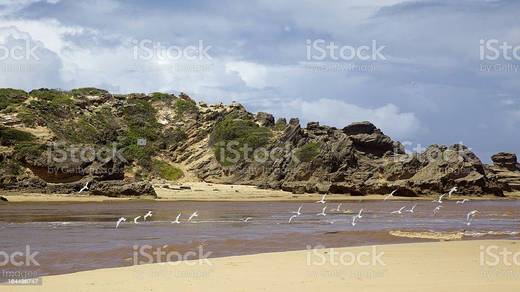 Bushman's River Mouth royalty-free stock photo