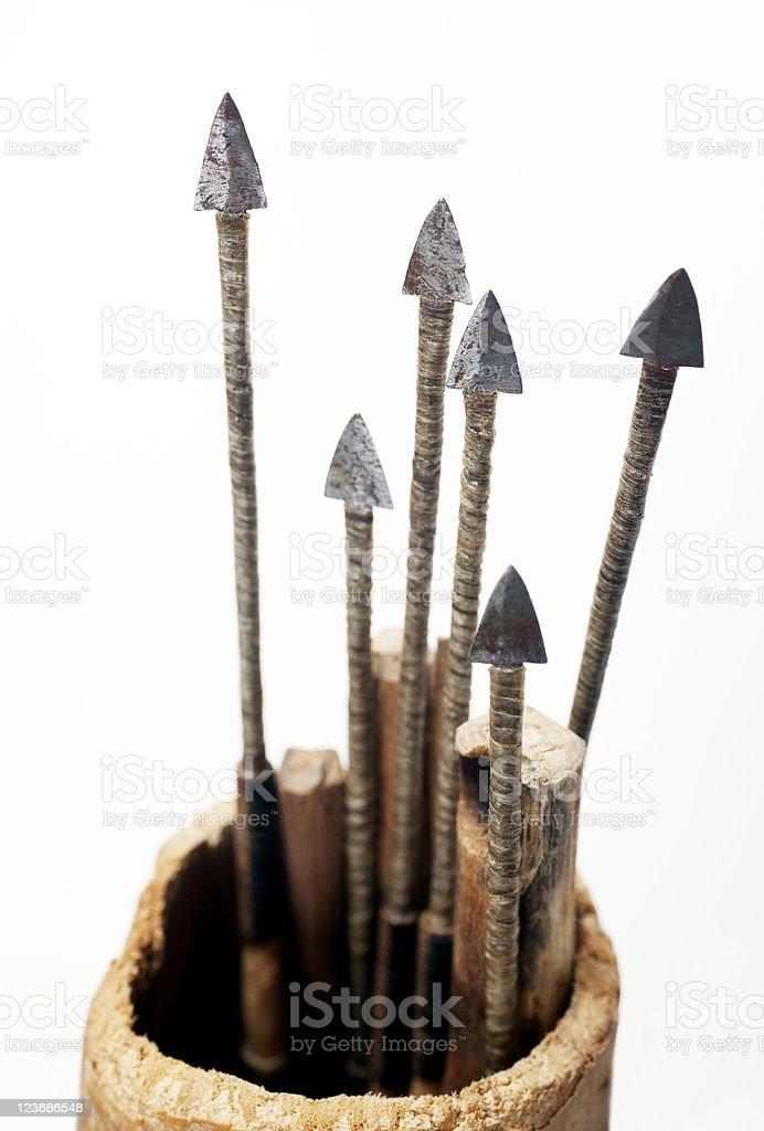 Bushmen arrows stock photo