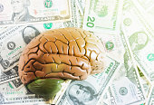 Business brain: anatomical brain model on stack of dollars