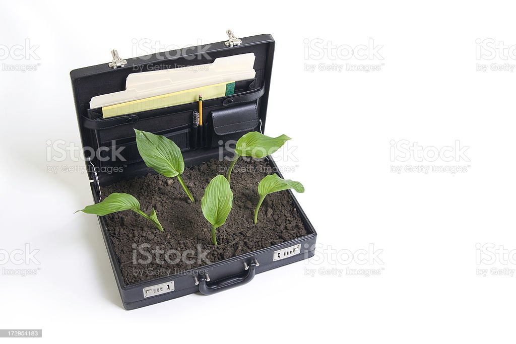 Business Environmental Issues royalty-free stock photo
