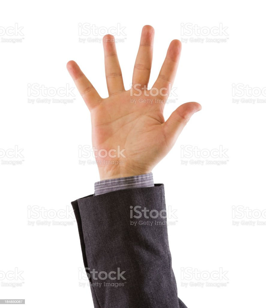 Business Hand On White royalty-free stock photo