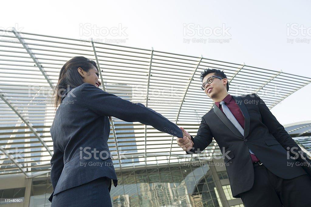 Business Hand Shake royalty-free stock photo