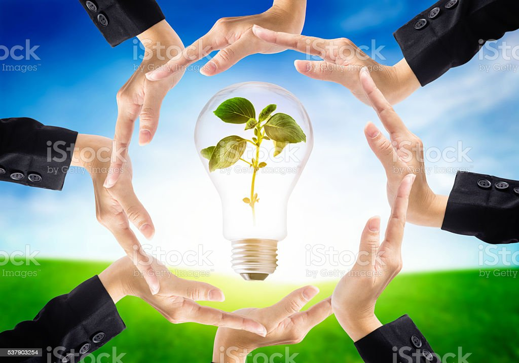 Business hands save the nature ecology on light bulb. stock photo