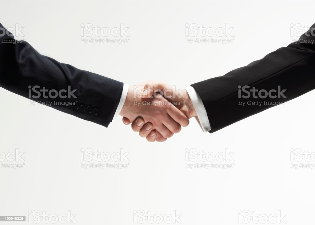 Business Handshake royalty-free stock photo
