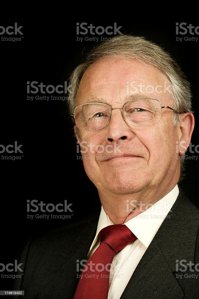 Business Leader royalty-free stock photo
