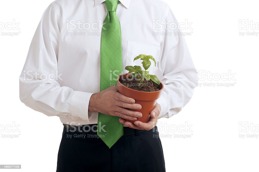 Business Man Holding a Green Plant stock photo