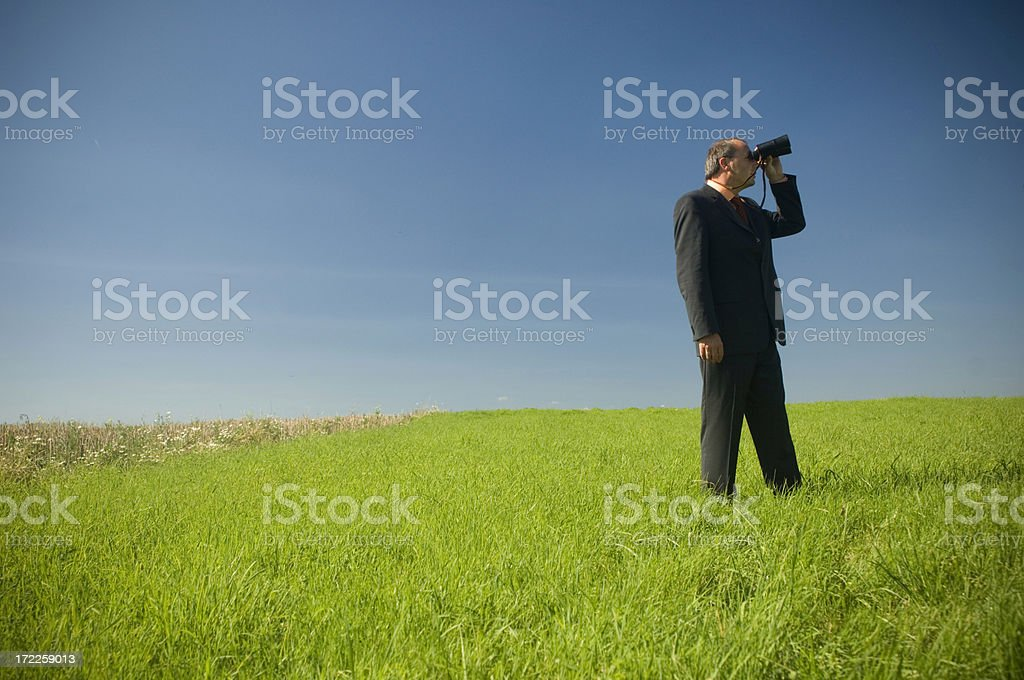 Business man in a field royalty-free stock photo