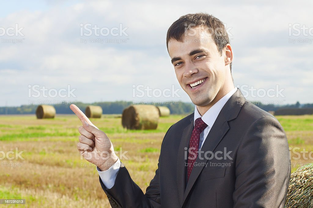 Business man in a suit royalty-free stock photo