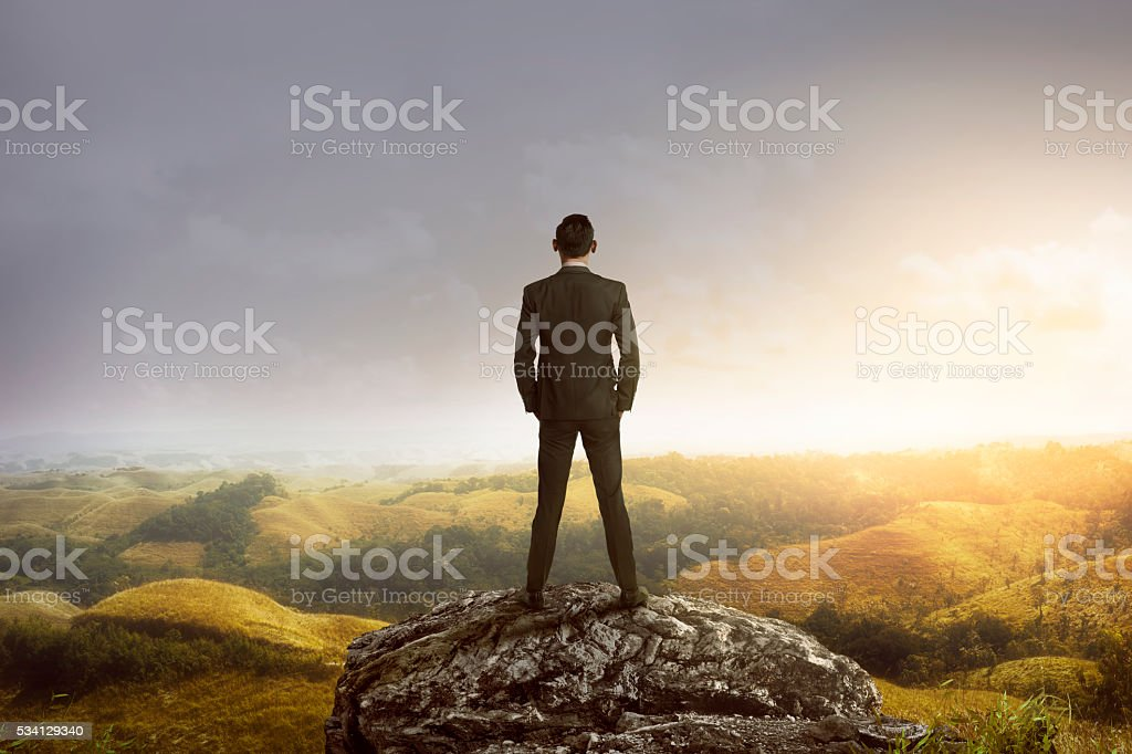 Business man standing on the top of the mountain stock photo
