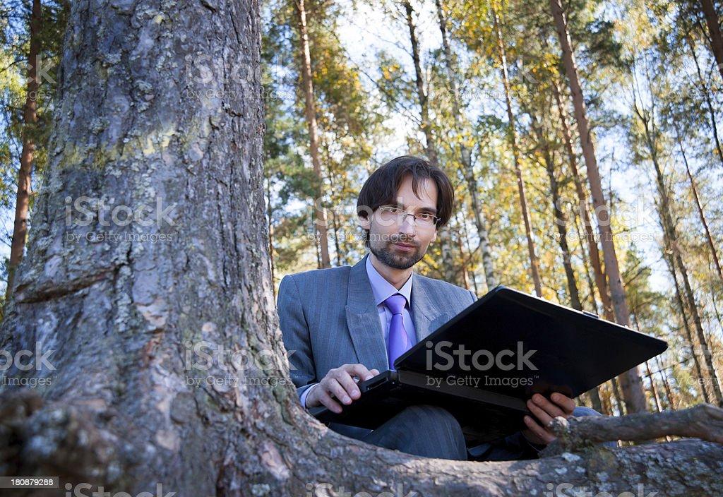 Business man using laptop royalty-free stock photo