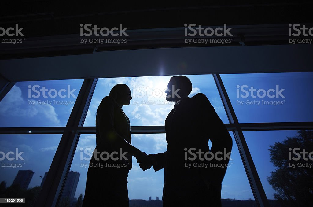 Business partners handshaking royalty-free stock photo
