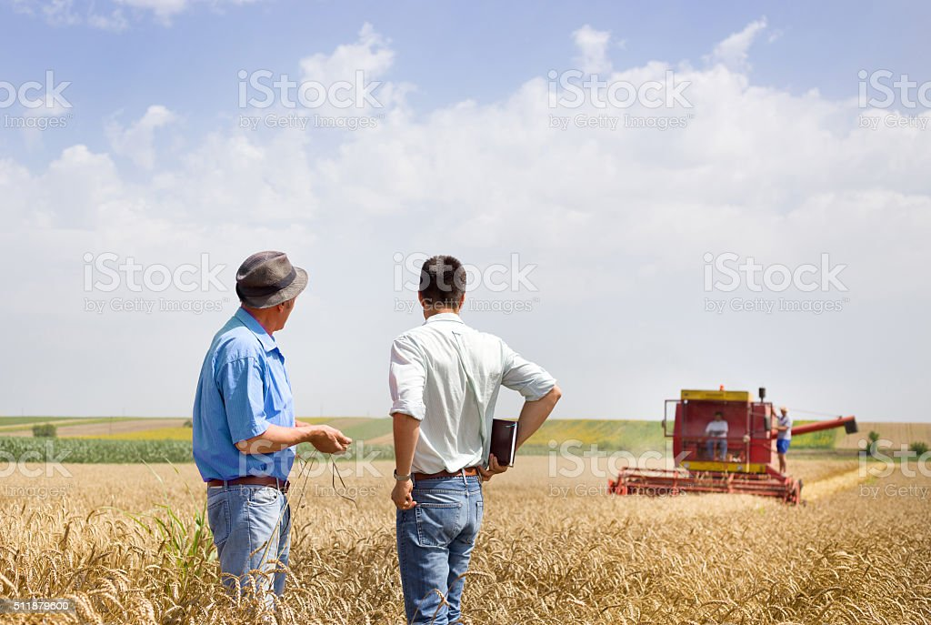 Business partners on wheat field stock photo