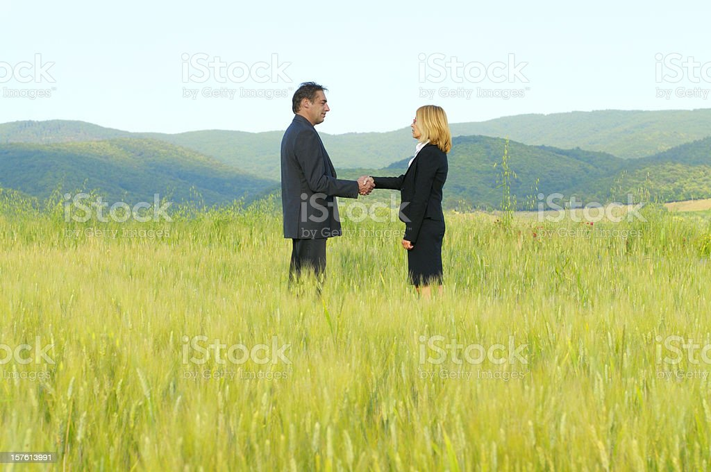 Business People Handshaking in the Countryside royalty-free stock photo