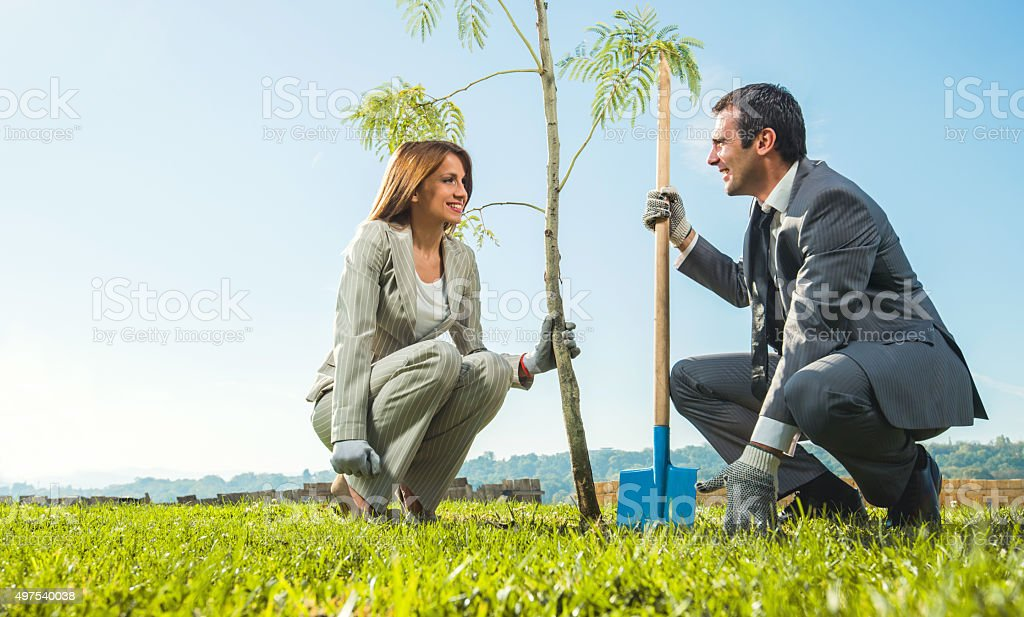 Business people planting tree and communicating. stock photo