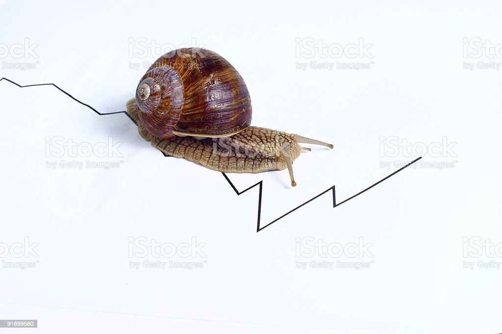 business - snail slow royalty-free stock photo
