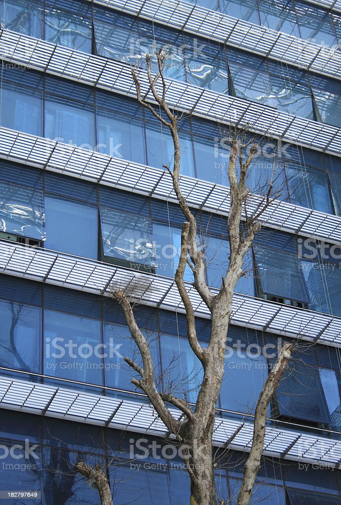 Business Tower and Dead Tree royalty-free stock photo