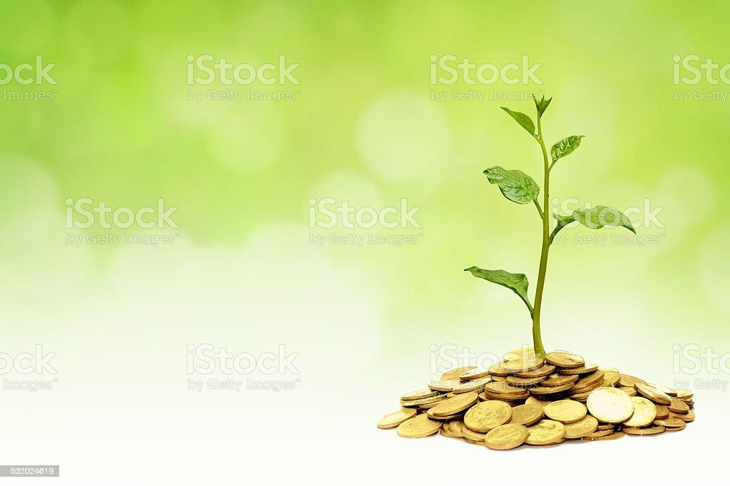business with csr practice stock photo