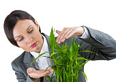 Business woman taking care of her plant