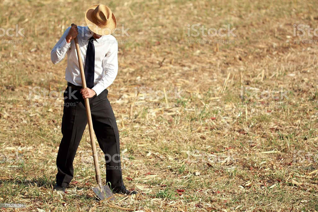 Businessman and farmer at work royalty-free stock photo
