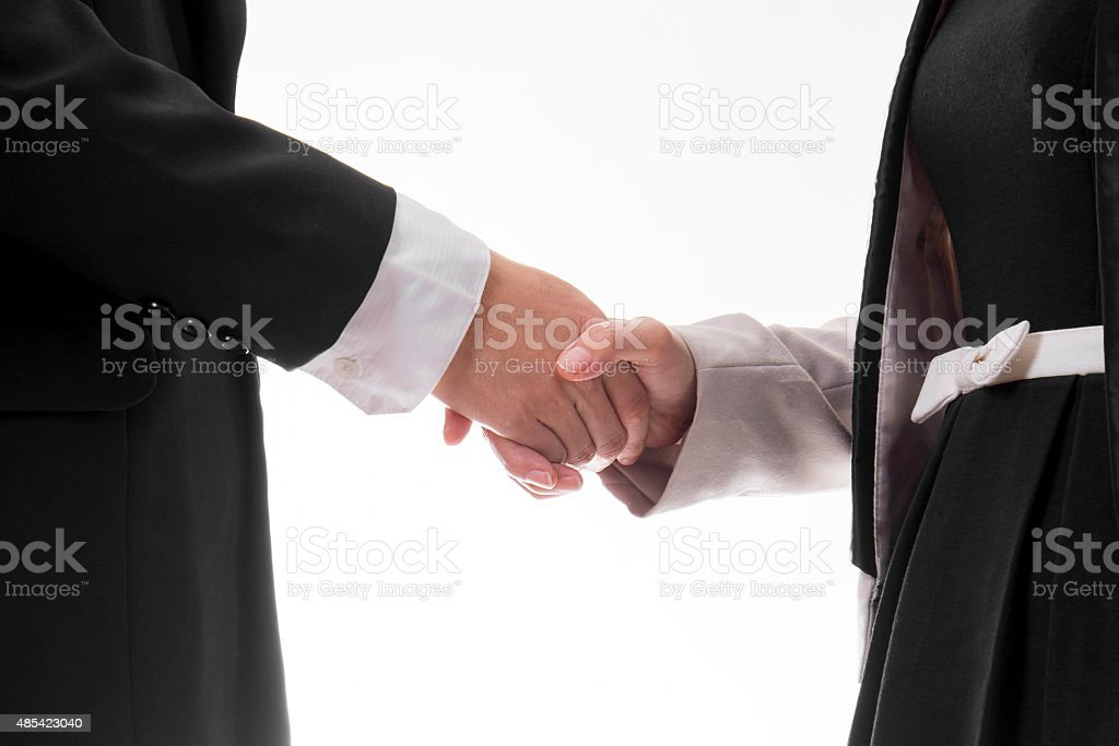 Businessman and His Client Shaking Hands royalty-free stock photo