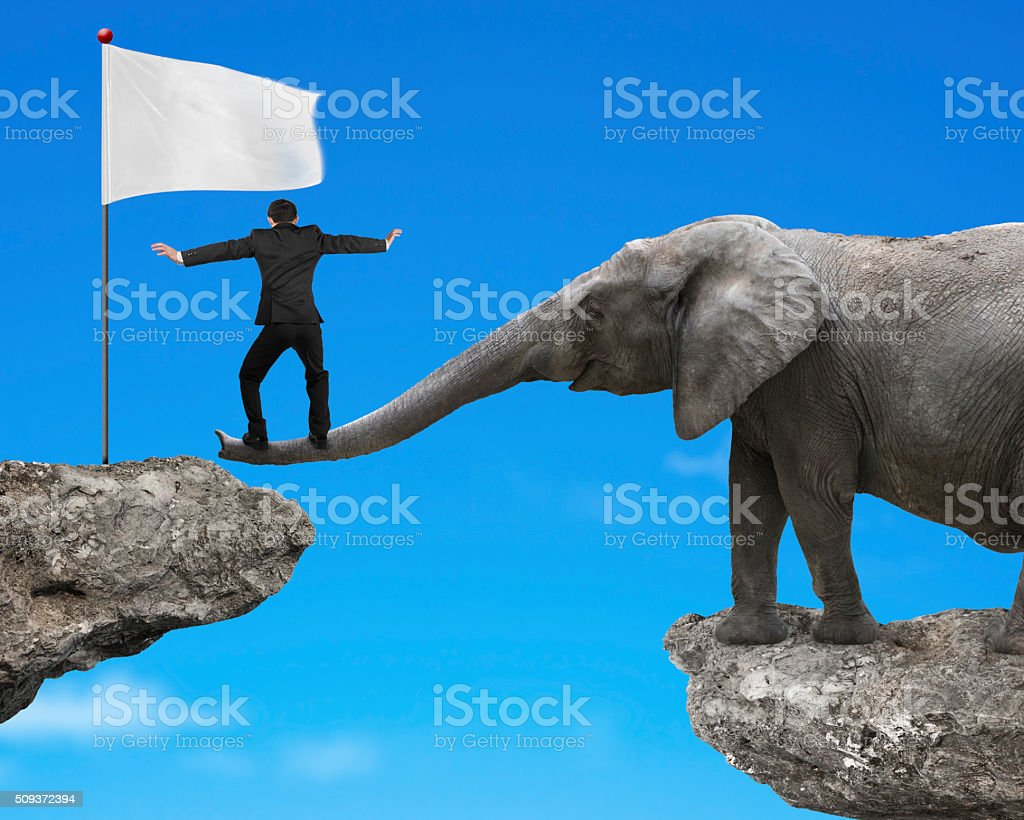 Businessman balancing on elephant trunk with white flag on cliff stock photo