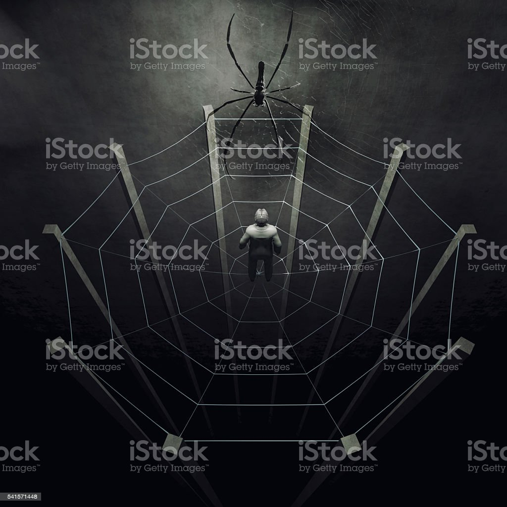 Businessman caught in a web stock photo