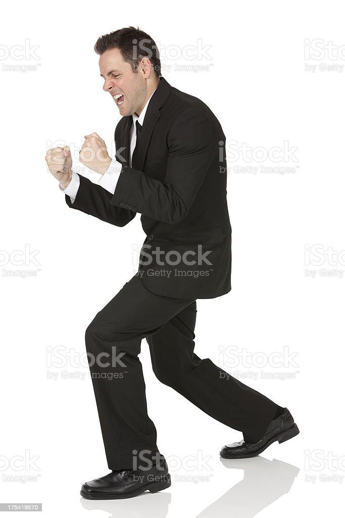 Businessman celebrating his success royalty-free stock photo