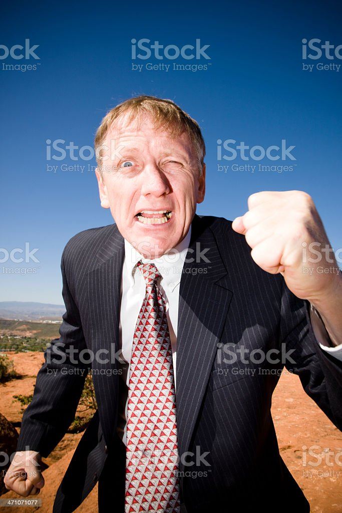 Businessman, Fight for your Right! royalty-free stock photo