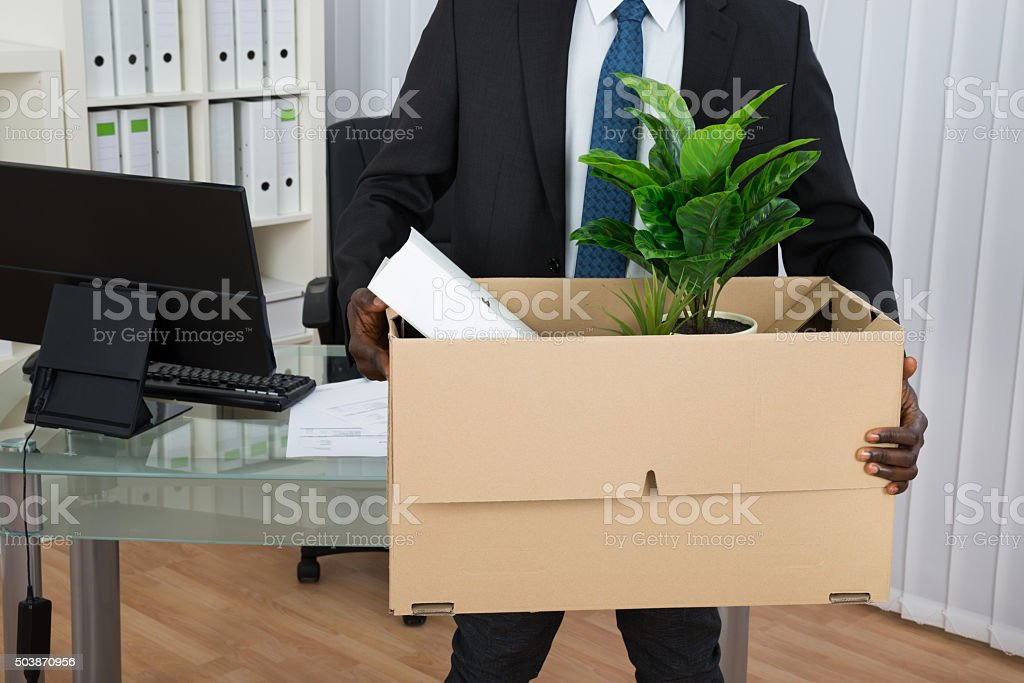 Businessman Holding Folder And Plant In Cardboard Box stock photo