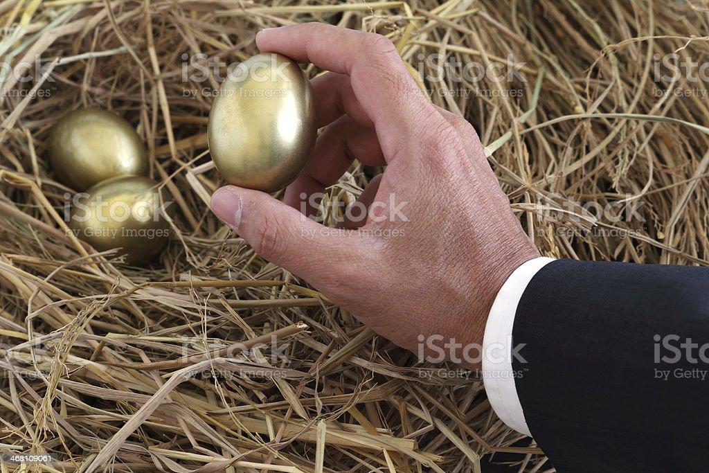 businessman holding golden egg from nest stock photo