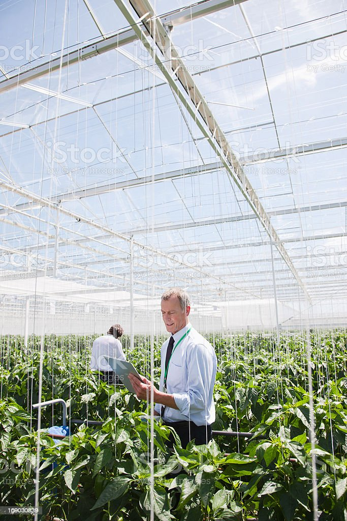 Businessman Holding on clipboard in greenhouse stock photo