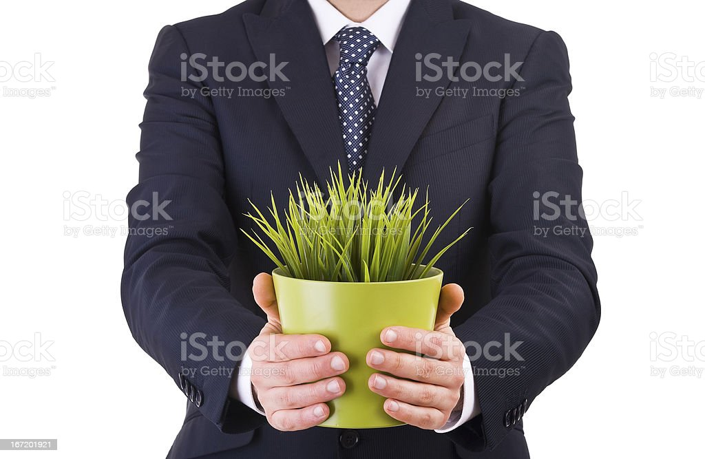 Businessman holding potted plant. royalty-free stock photo