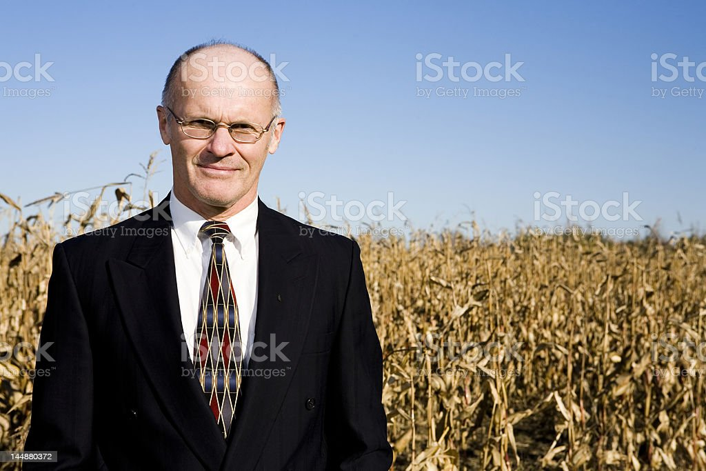 Businessman in a Field! royalty-free stock photo