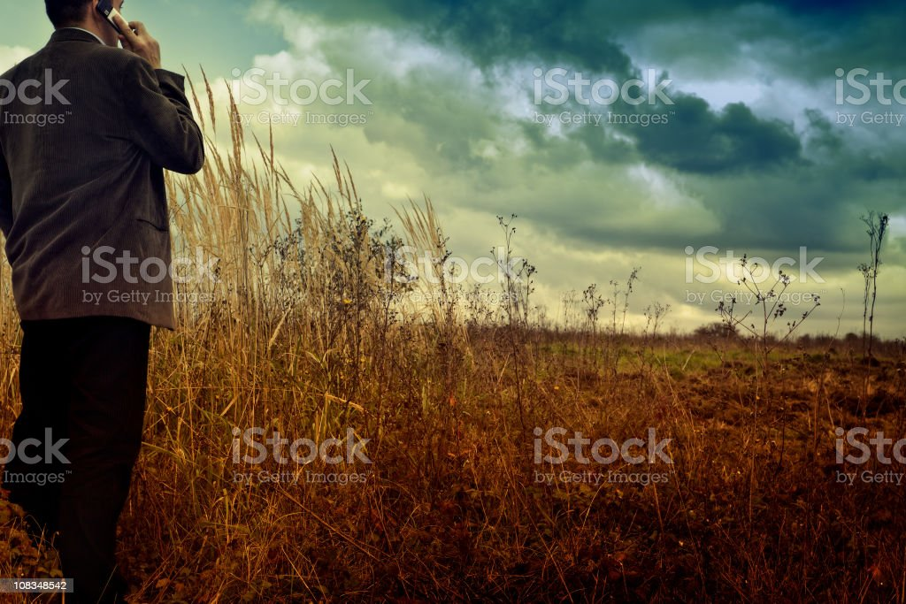 Businessman in field royalty-free stock photo