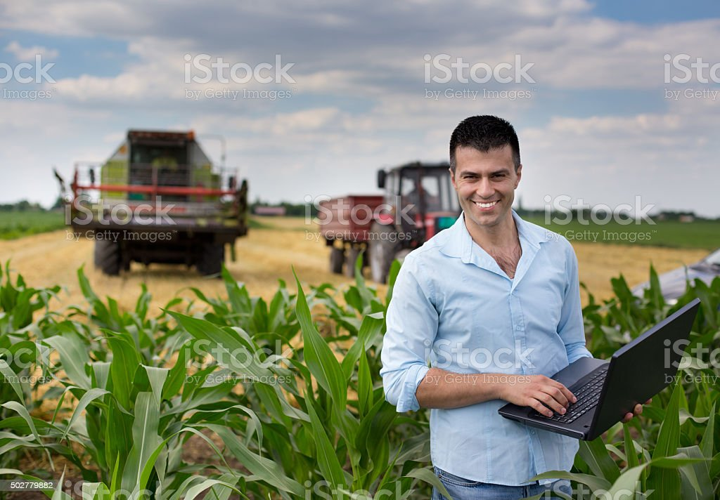 Businessman in the field stock photo