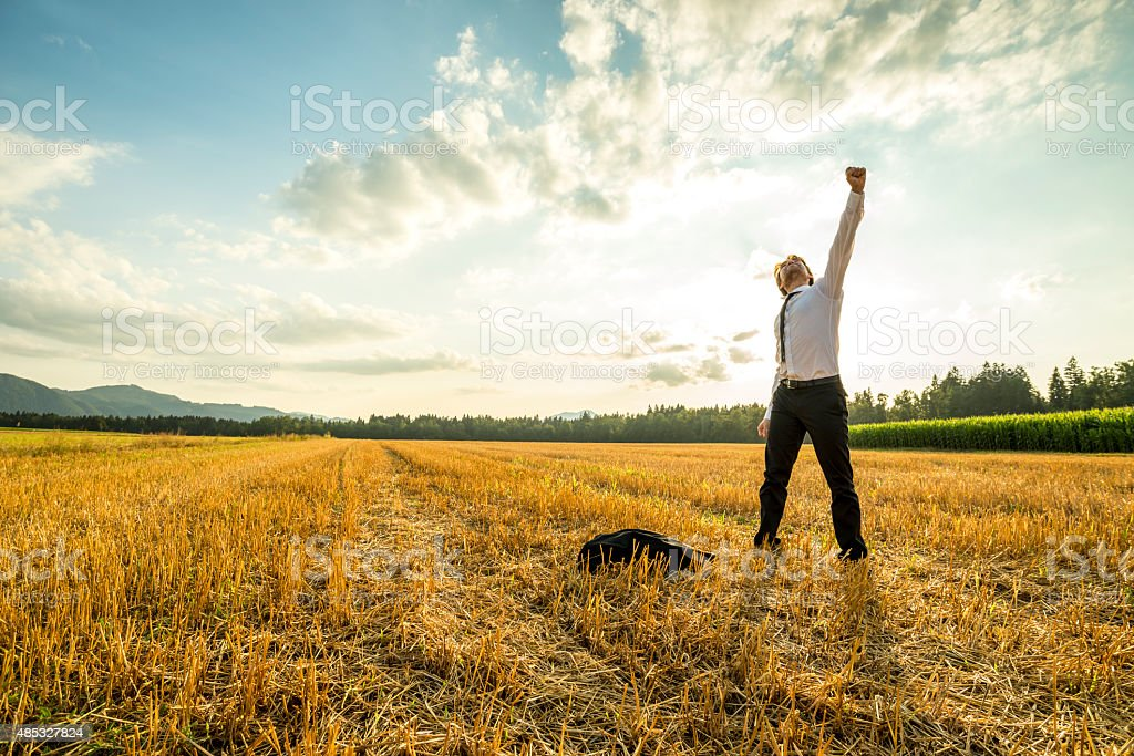 Businessman in the Field Raising Arm for Success stock photo