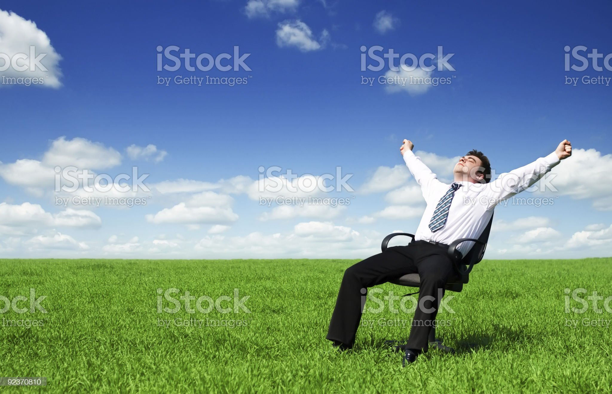 Businessman in the meadow royalty-free stock photo