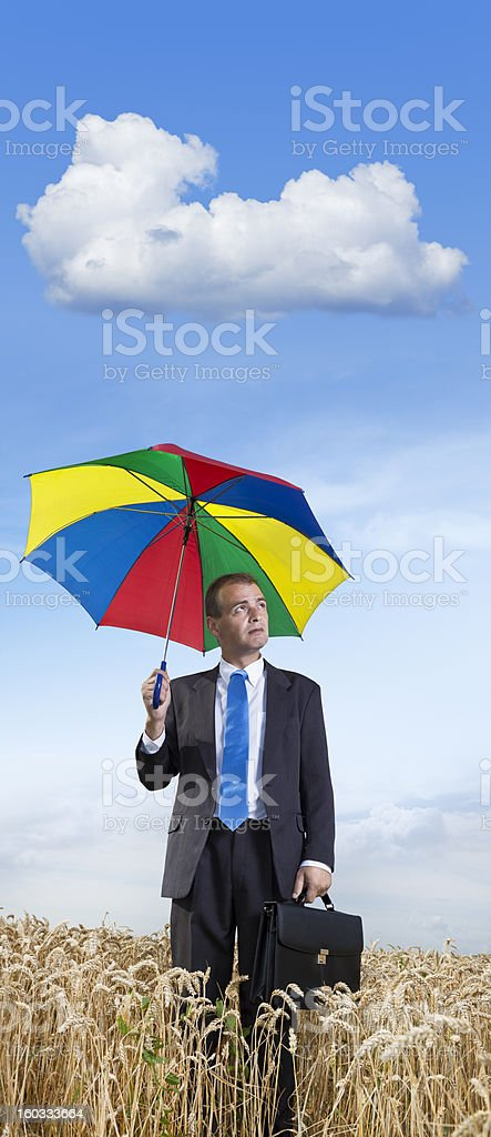 Businessman in wheat field with briefcase and umbrella royalty-free stock photo