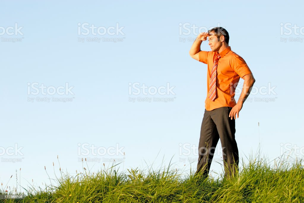 businessman looking in the distence royalty-free stock photo