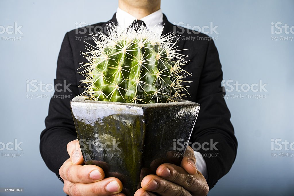 Businessman offering a cactus stock photo