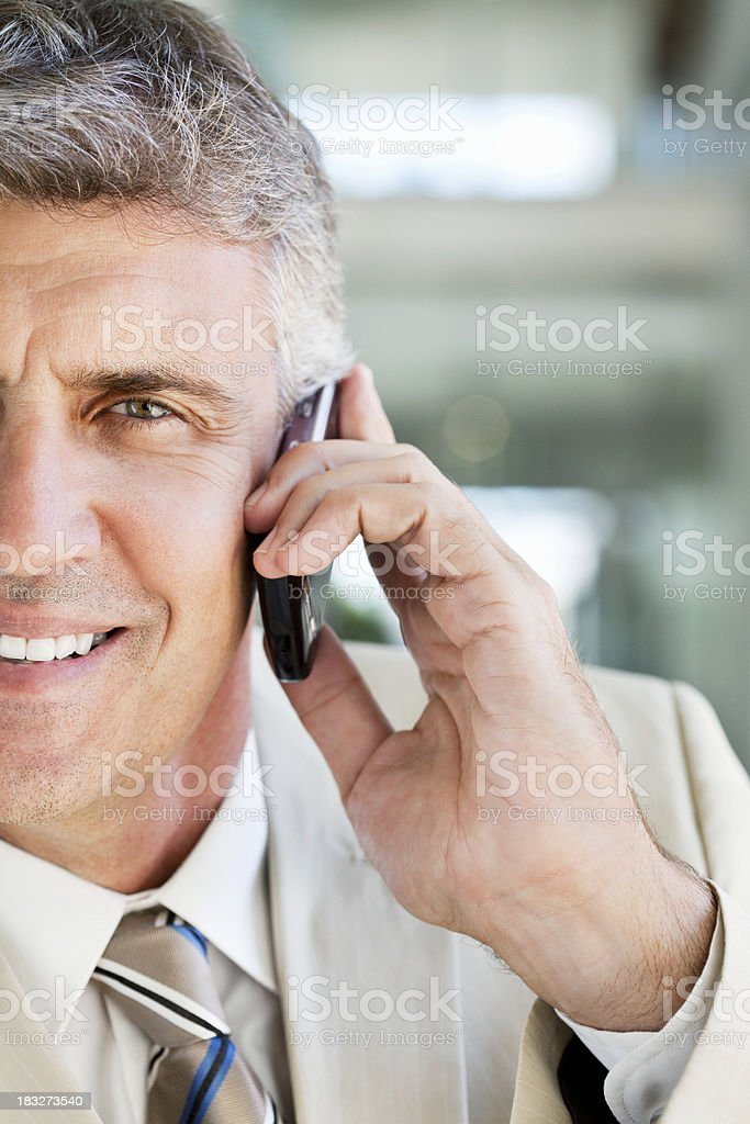 Businessman on a Cellphone royalty-free stock photo