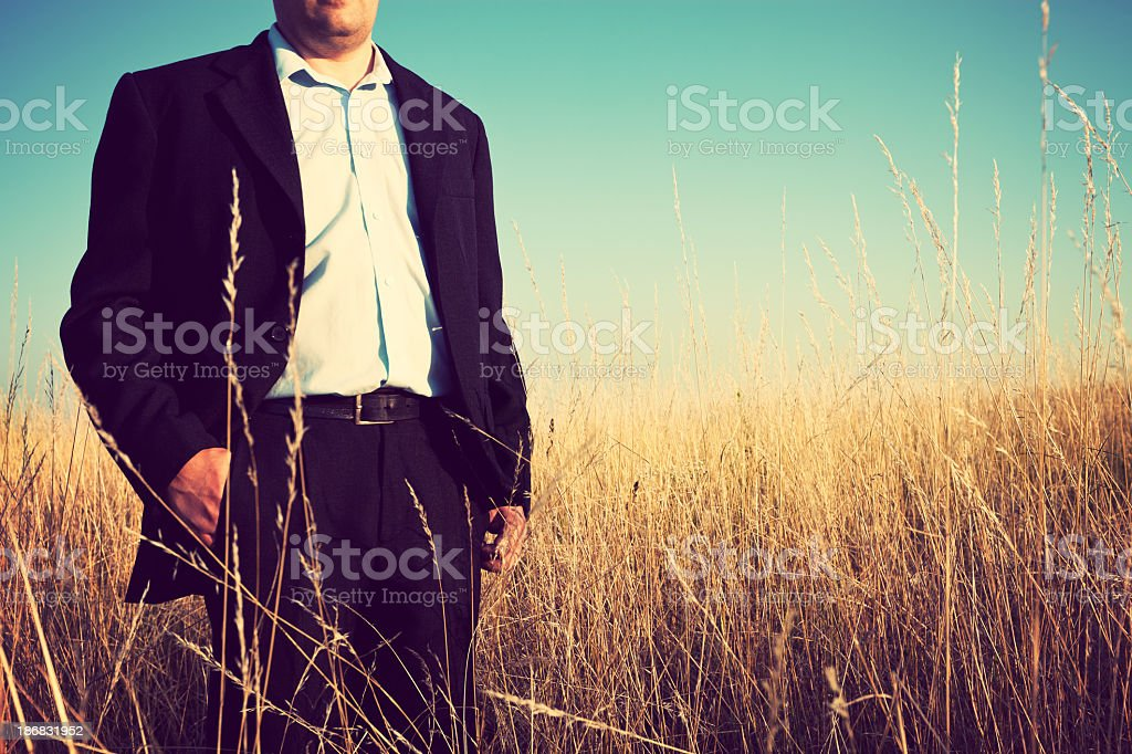 Businessman on the meadow stock photo