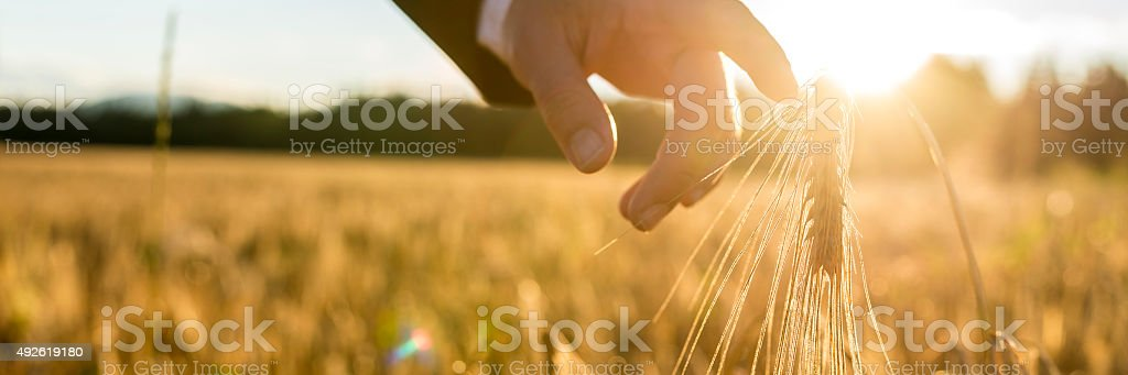 Businessman or environmentalist reaching down with his finger ge stock photo