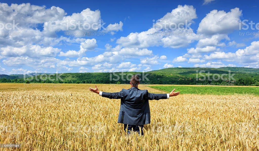 Businessman outside  harvest stock photo