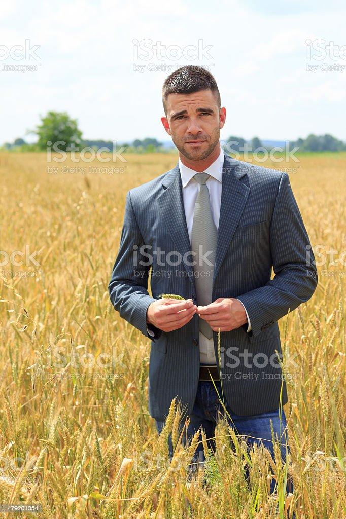Businessman outside  harvest stock photo