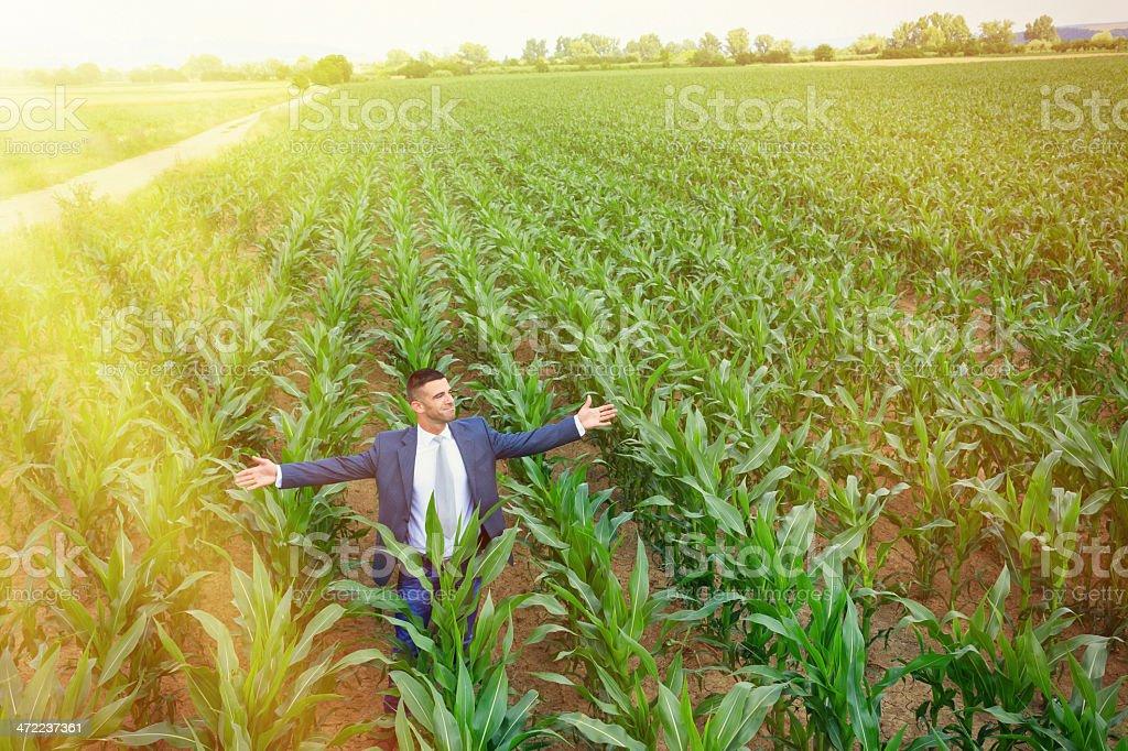 Businessman outside royalty-free stock photo