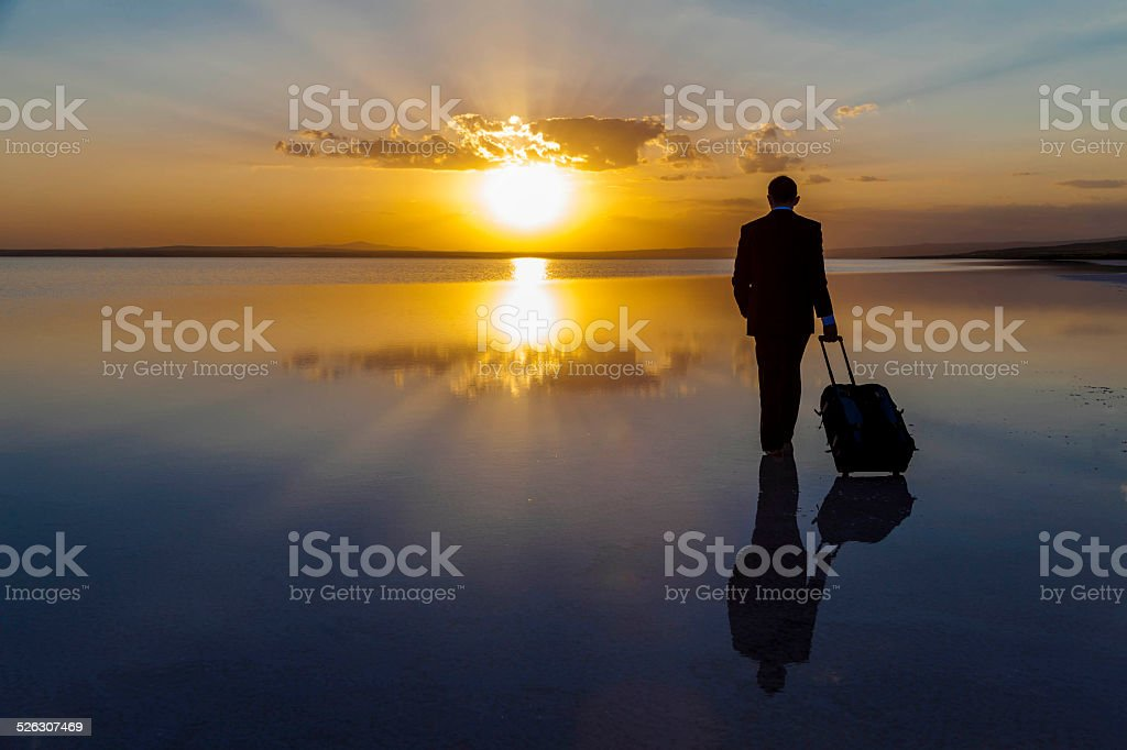 Businessman pulling his luggage stock photo