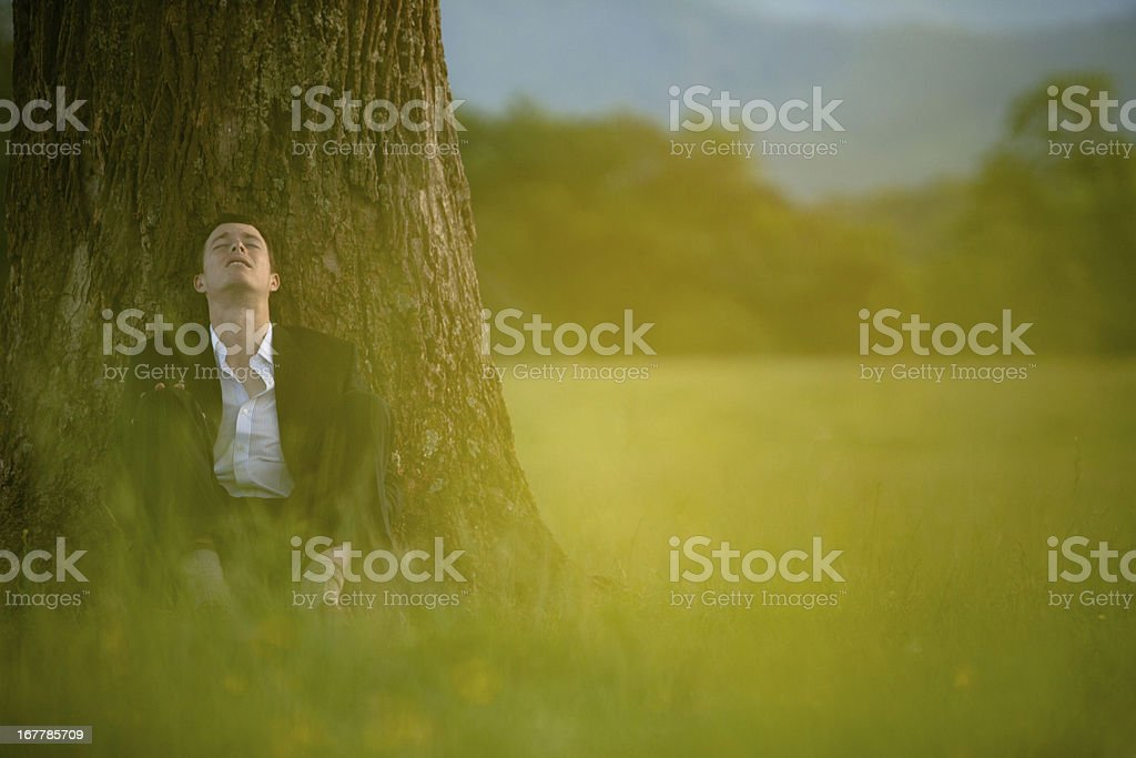 Businessman relaxing in nature royalty-free stock photo