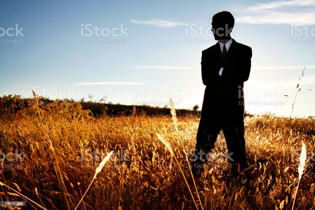 Businessman Standing in Farm Field with Arms Crossed royalty-free stock photo